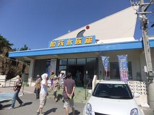 49加茂水族館1.JPG