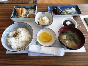 49加茂水族館4.JPG